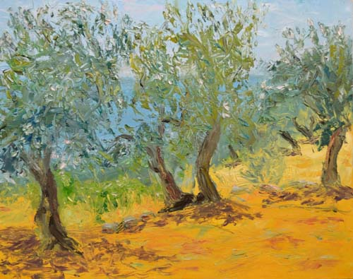 Olive Trees at New Kidonies, 11 x 14, SOLD